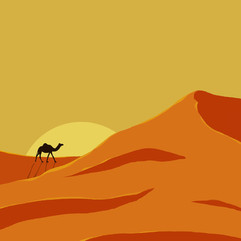 day 13 dune.jpg