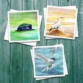 sealife cards1.jpg