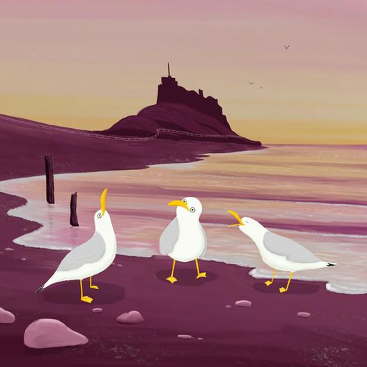 Seagull conversation