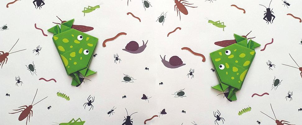 Frog instructional design