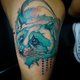 watercolor raccoon