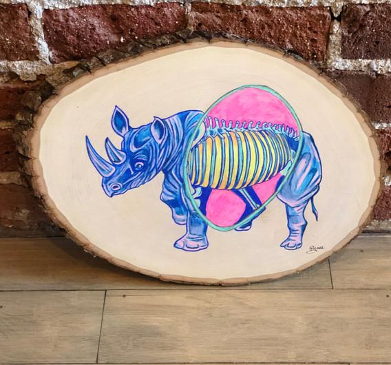 X-ray Rhino