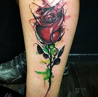 water color rose