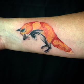 water color fox