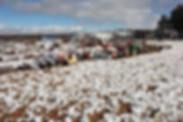 Field of Dreams in the Arizona Snow.JPG