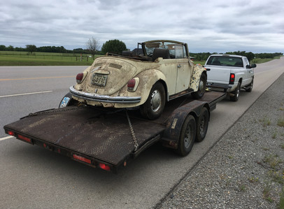Latest barn-find