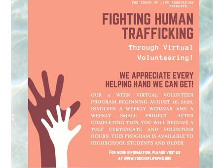 Our 2nd Virtual Volunteer Webinar Series Has Begun...