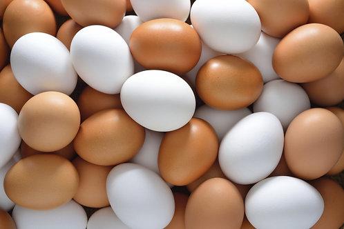 Chicken Eggs (6)