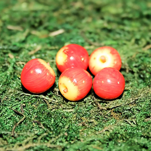 Apples (5) (Red or Green)