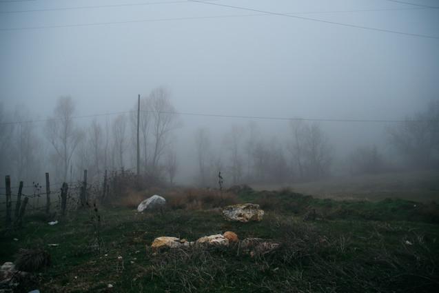photo08.jpg