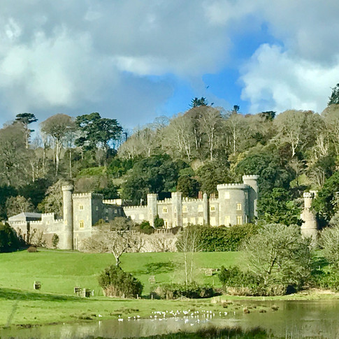 Caerhays Castle Estate and Gardens