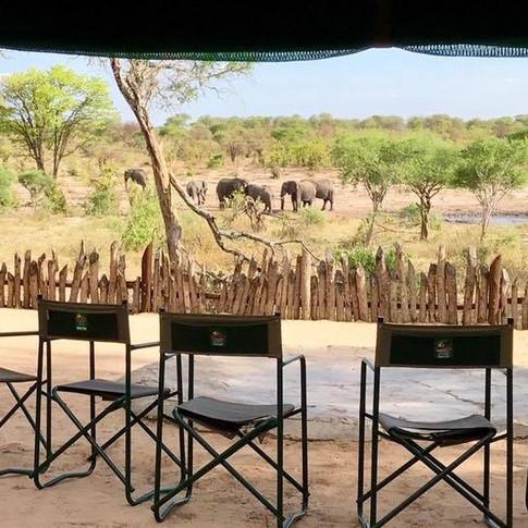 The Gathering, Botswana