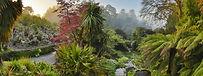 Trebah Sub-tropical Garden