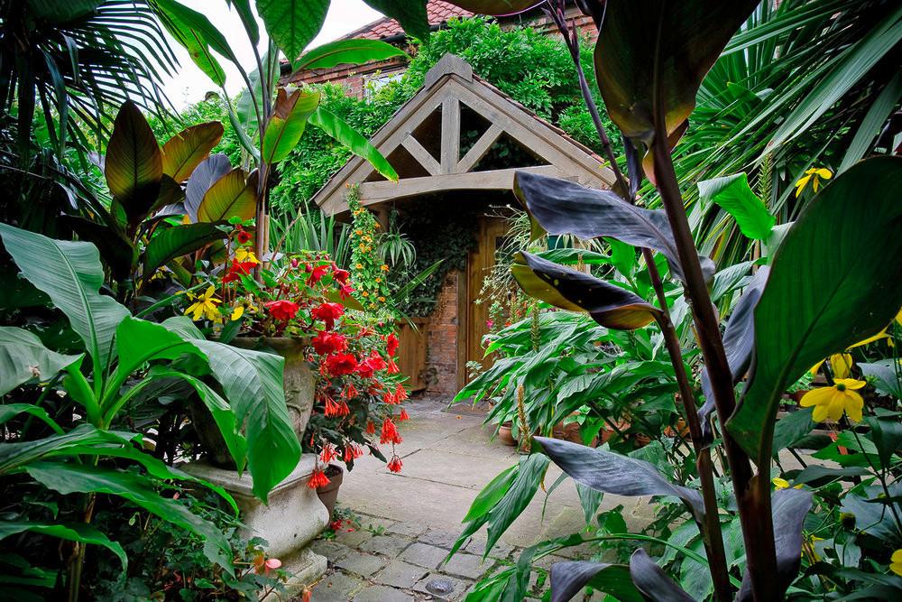 Tropical garden in Cornwall