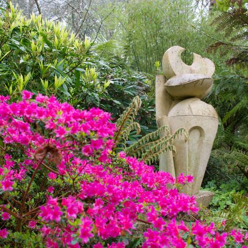 Tremenheere Sculpture Gardens