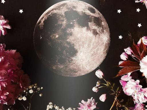 Luna Nueva. Rosas, Jazmín y Azahar