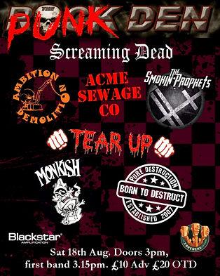 Punk Den 2018 Poster.jpg