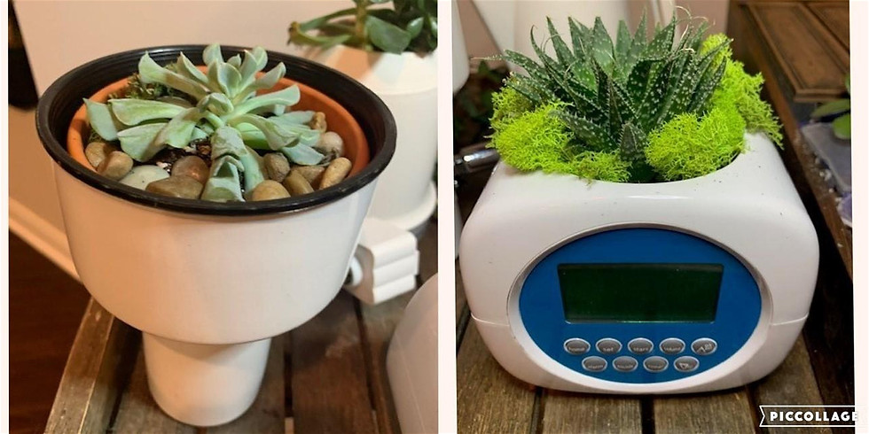 Repurpose with Purpose Earth Day Succulent Workshop (Wednesday 04/22)