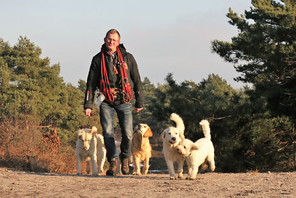 Gerard Steenbreker donga-dogs