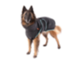 SuperFurDogs%20chillcoat%20classic_edite