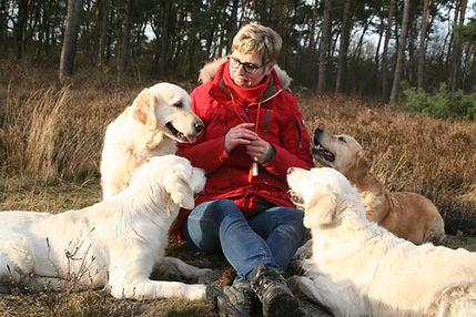 Karin Steenbreker donga-dogs