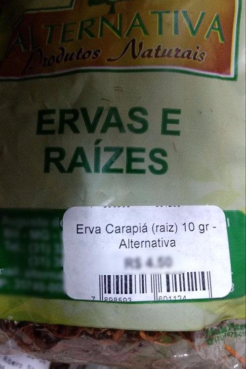 Carapiá - Erva Medicinal - Chás e Banhos - Alternativa