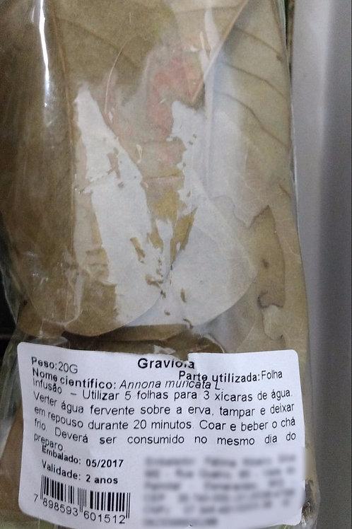 Graviola - Erva Medicinal - Chás e Banhos - Alternativa