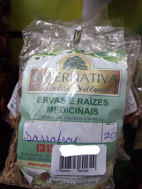 Sassafrás (Canela) - Erva Medicinal - Chás e Banhos - Alternativa