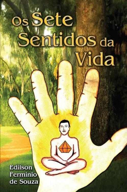 Livro Os Sete Sentidos Da Vida