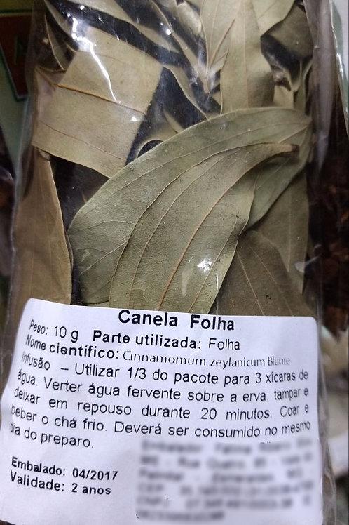 Canela (folha) - Erva Medicinal - Chás e Banhos - Alternativa