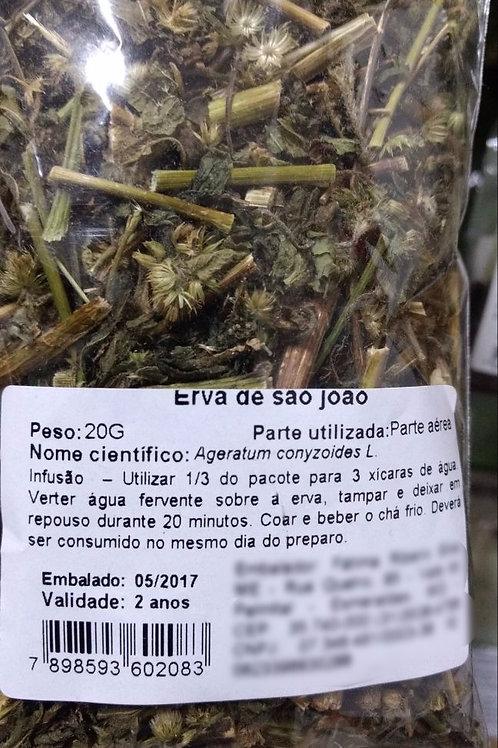 Erva de São João - Erva Medicinal - Chás e Banhos - Alternativa