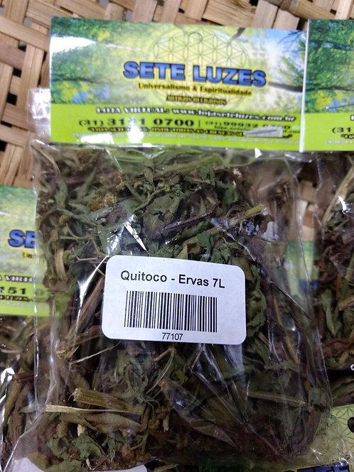 ervas medicinais quitoco