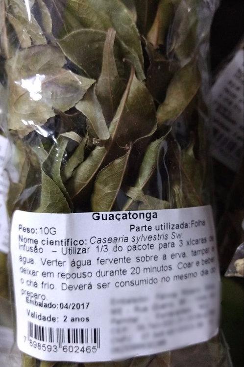 Guaçatonga - Erva Medicinal - Chás e Banhos - Alternativa
