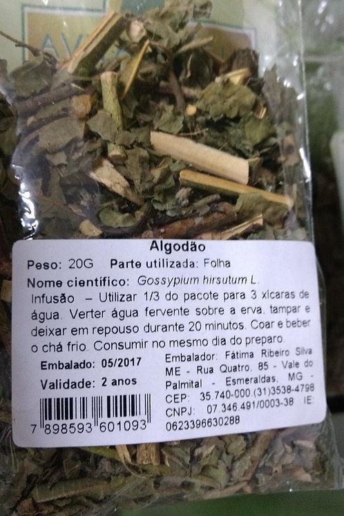 Algodão (Folhas) - Erva Medicinal - Chás e Banhos - Alternativa
