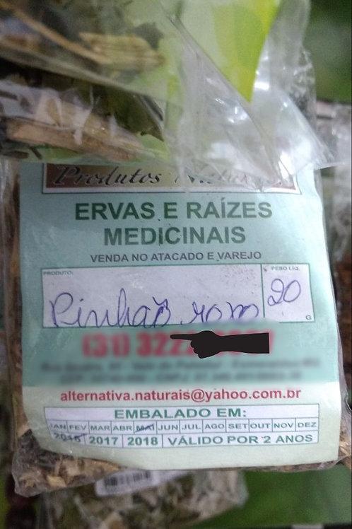 Pinhão Roxo - Erva Medicinal - Chás e Banhos - Alternativa
