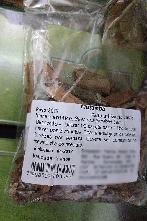 Mutamba - Erva Medicinal - Chás e Banhos - Alternativa
