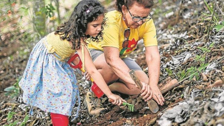 Viúva de vítima de acidente aéreo utiliza indenização para criar um parque de reflorestamento