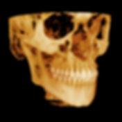 3DCT.jpg