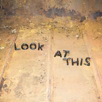 David Shrigley 'Look At This'