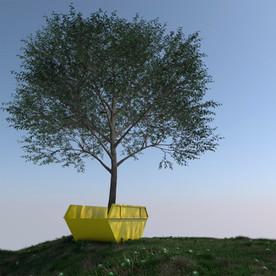 TREE IN SKIP