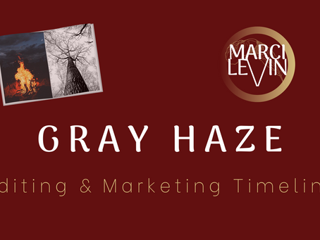 Gray Haze: Editing and Marketing Timeline