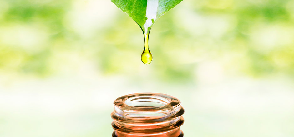 Herbal essence. Alternative healthy medi