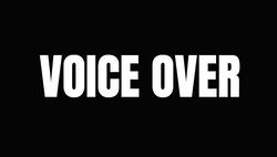 ANIMATION VOICE ACTOR