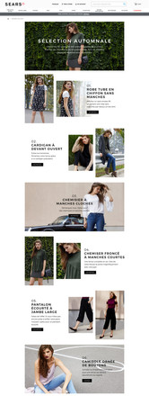 French Landing Page