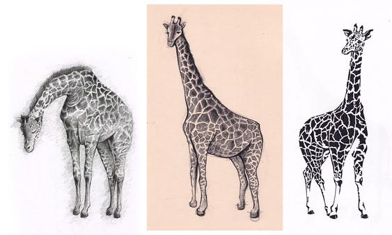 Giraffe study pt.1