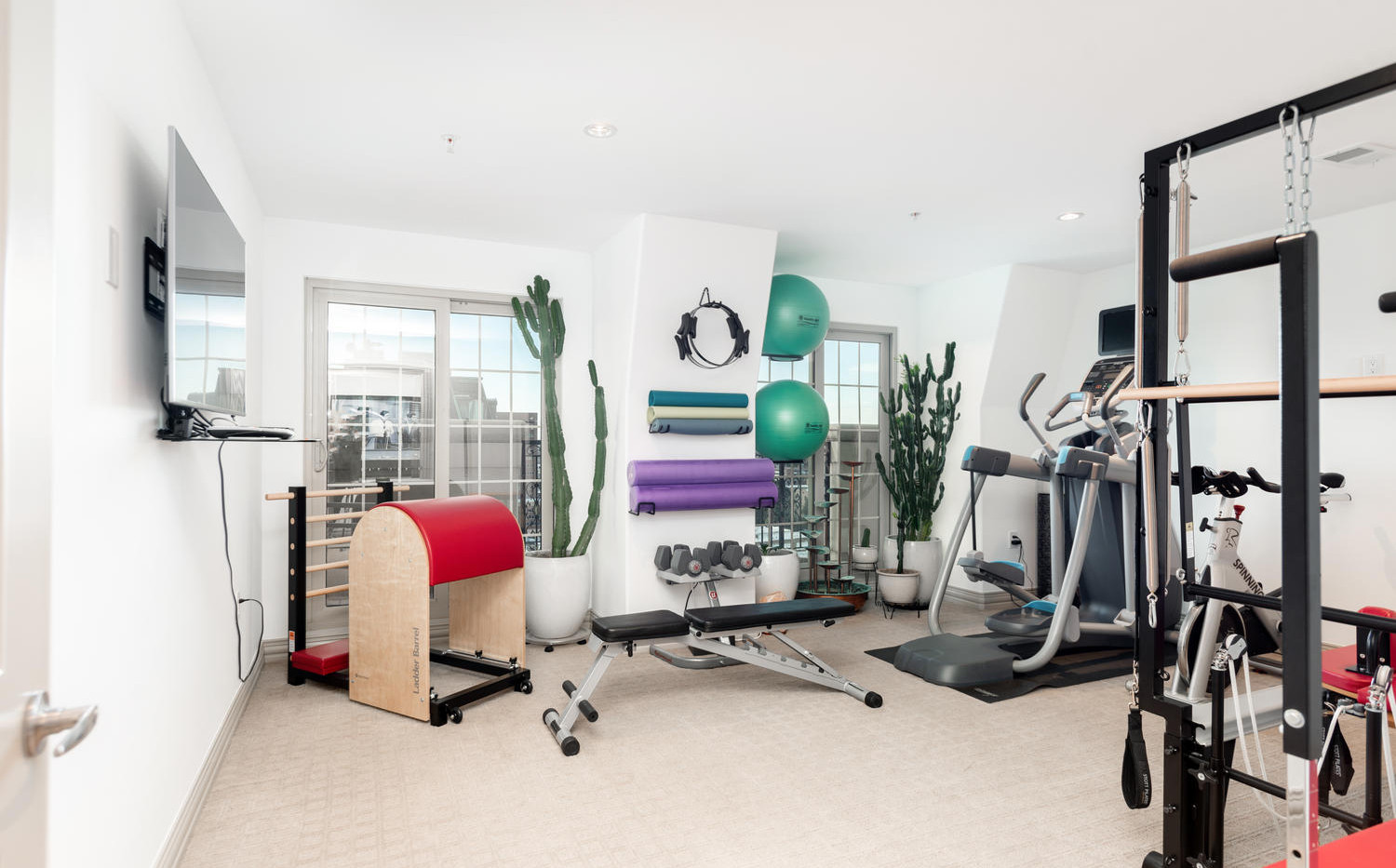 925 Lincoln Street-large-036-030-Workout