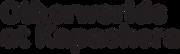black logo-02.png