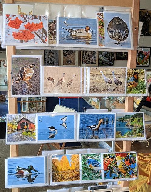 Photo notecards, various