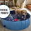 Thumbnail: Piscina Banheira para Pet ideal para Golden