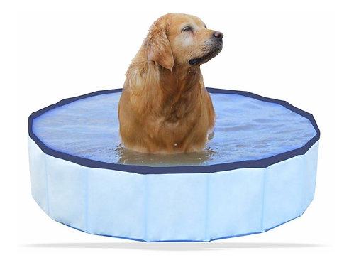 Piscina Banheira para Pet ideal para Golden